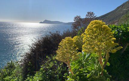 La playa más secreta del Cabo de Gata